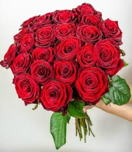 136196068123_trandafiri_rosii