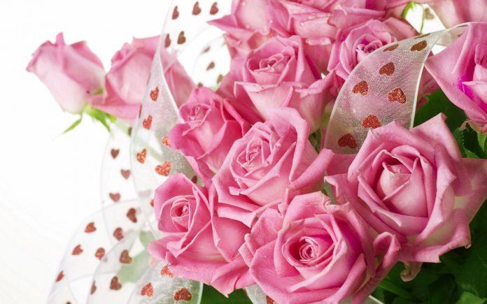 Ce semnifica trandafirii roz
