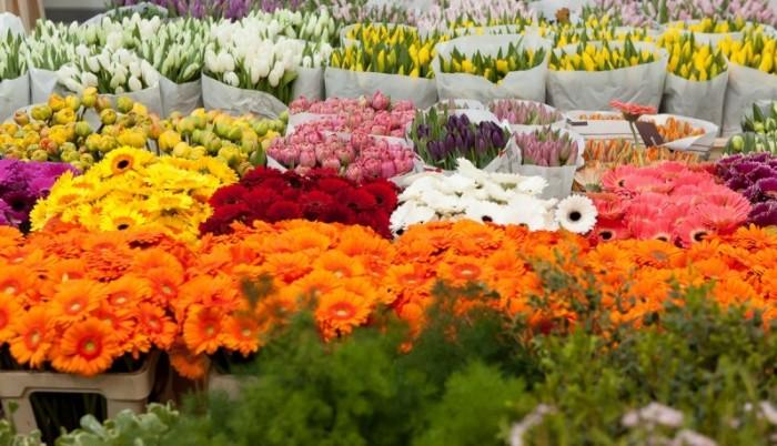 Depozit flori