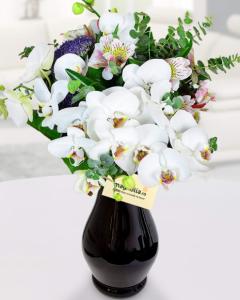1470301093buchet_orhidee_phalaenopsis_465_580