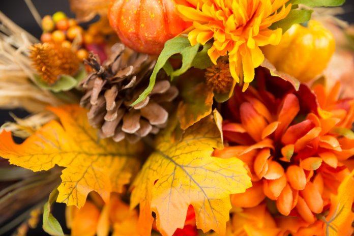 Buchete De Toamnă 3 Idei De Cadouri Magnolia Blog