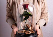 Trandafirii criogenati-intretinere