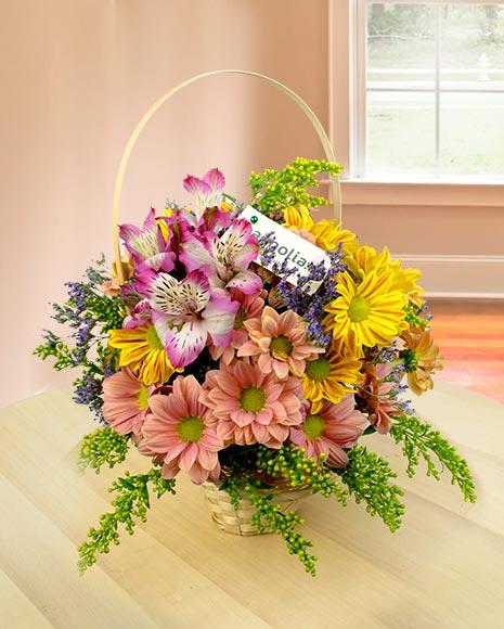 Coşuleţ cu flori de sanziene