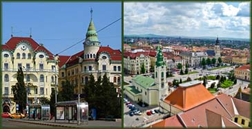 Buchete de Flori in Oradea, Romania