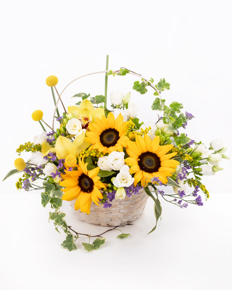 Basket filled with sunflower