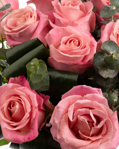 Bouquet with pink roses and eucalyptus