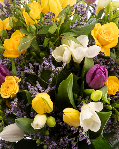 Bouquet of mix tulips and freesias
