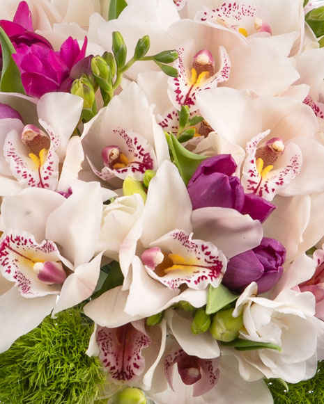 Buchet orhidee şi frezii