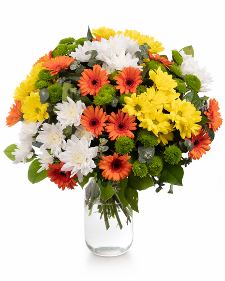 Bouquet of chrysanthemums and gerbera