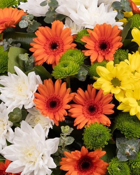 Bouquet of chrysanthemums and gerbera