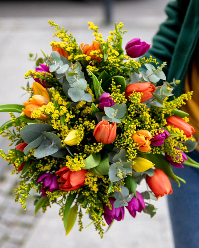 Tulips and solidago bouquet