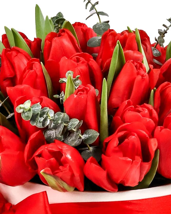 Cutie cu lalele roșii