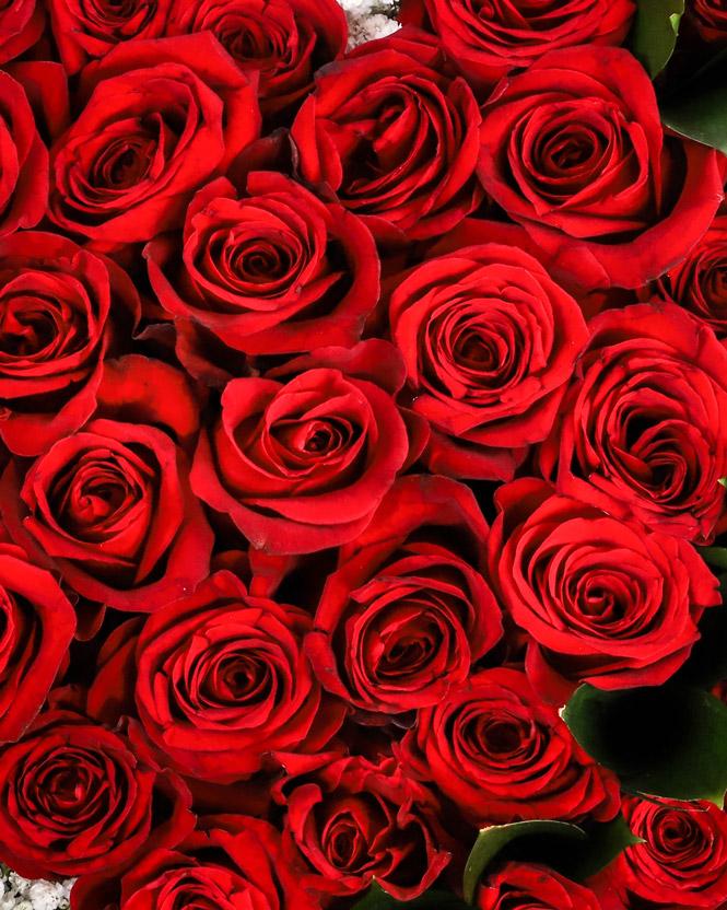 Inimă florală cu trandafiri roșii