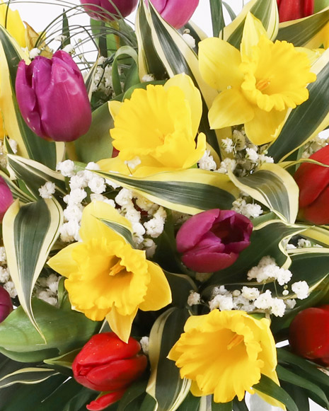 Daffodils and tulips bouquet