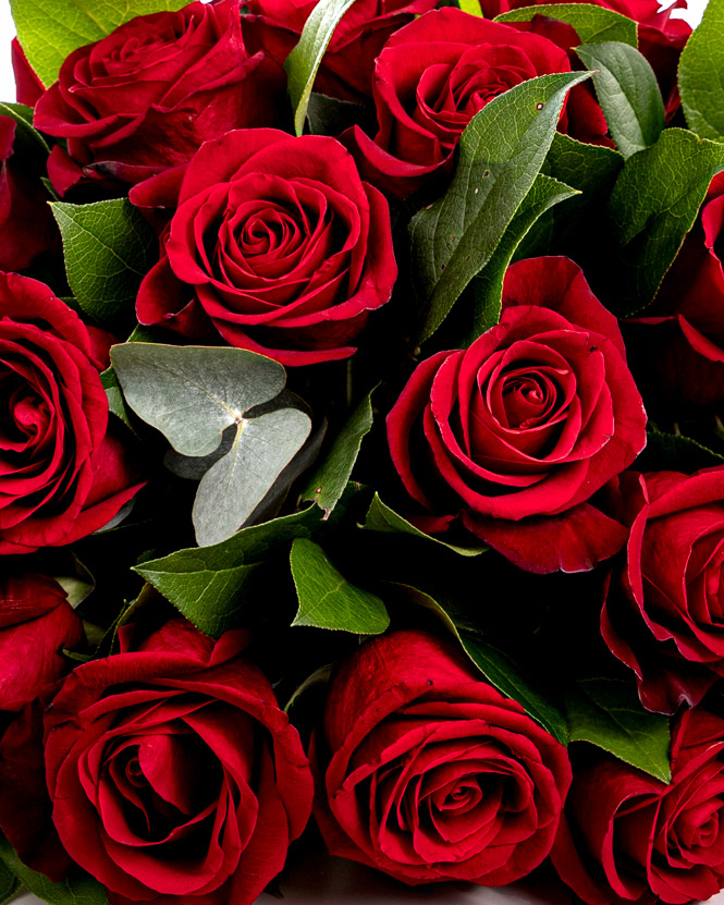 Aranjament funerar cu trandafiri roșii
