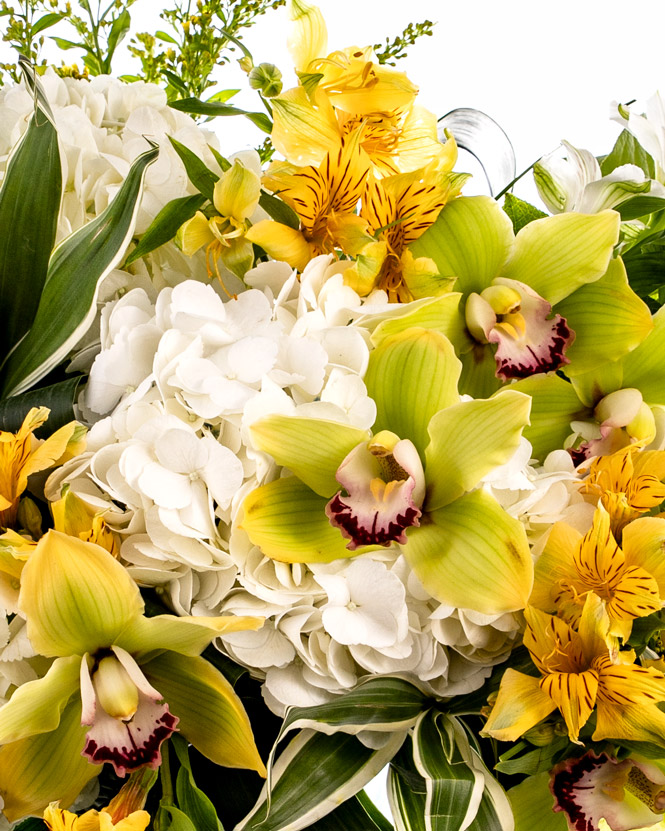 Buchet cu orhidee Cymbidium și hortensii