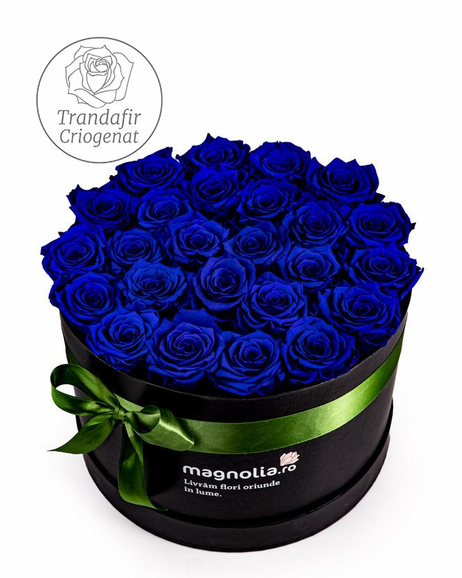 Aranjament cu trandafiri criogenati albastri