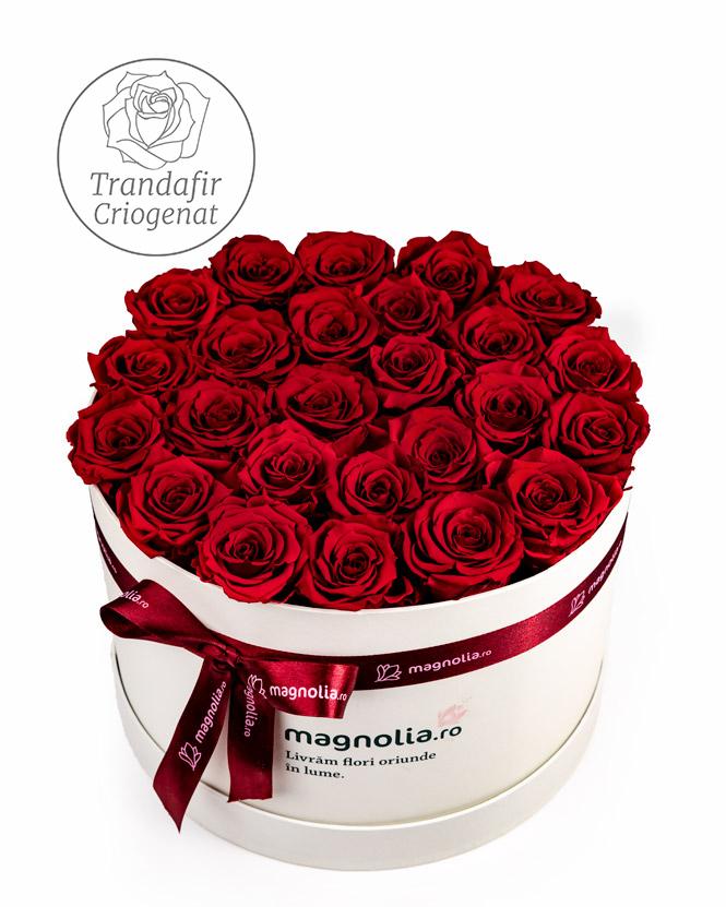 Trandafiri criogenati rosii in cutie