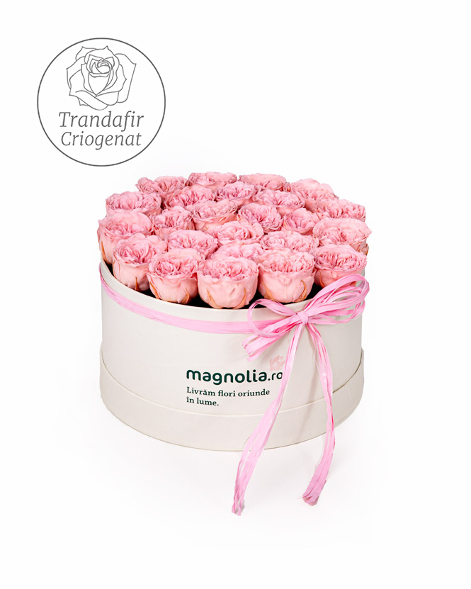 Trandafiri criogenati englezesti roz in cutie