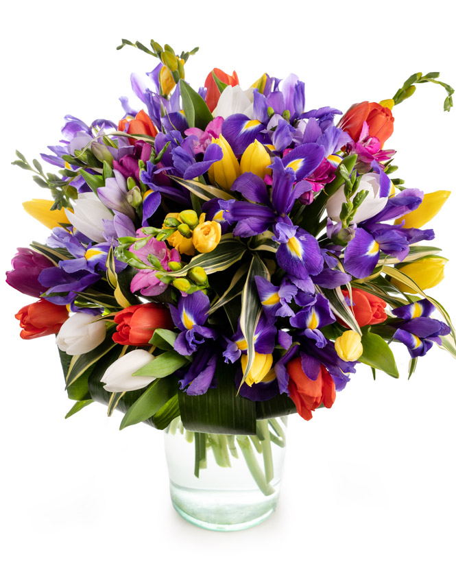 Bouquet with tulips, irises and freesias