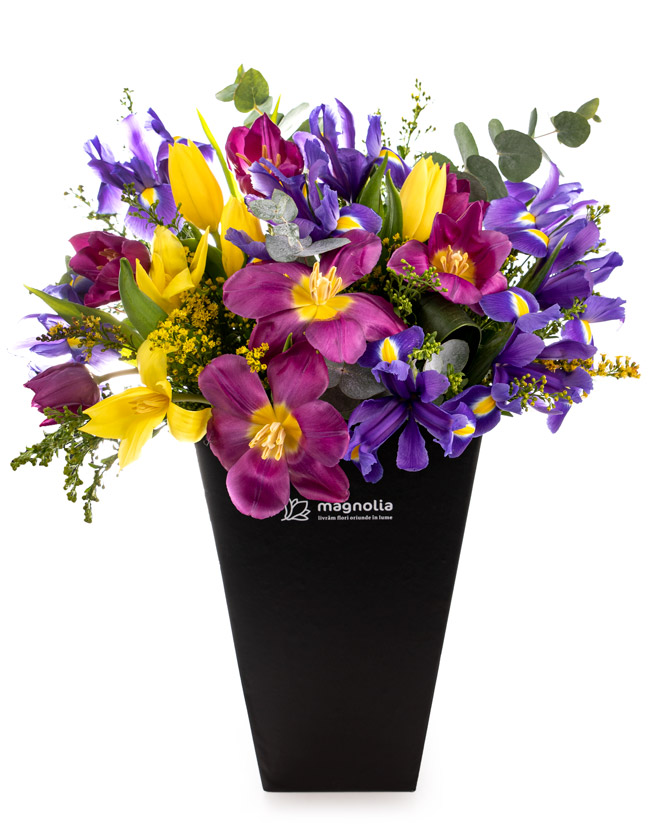 Spring box with tulips and irises