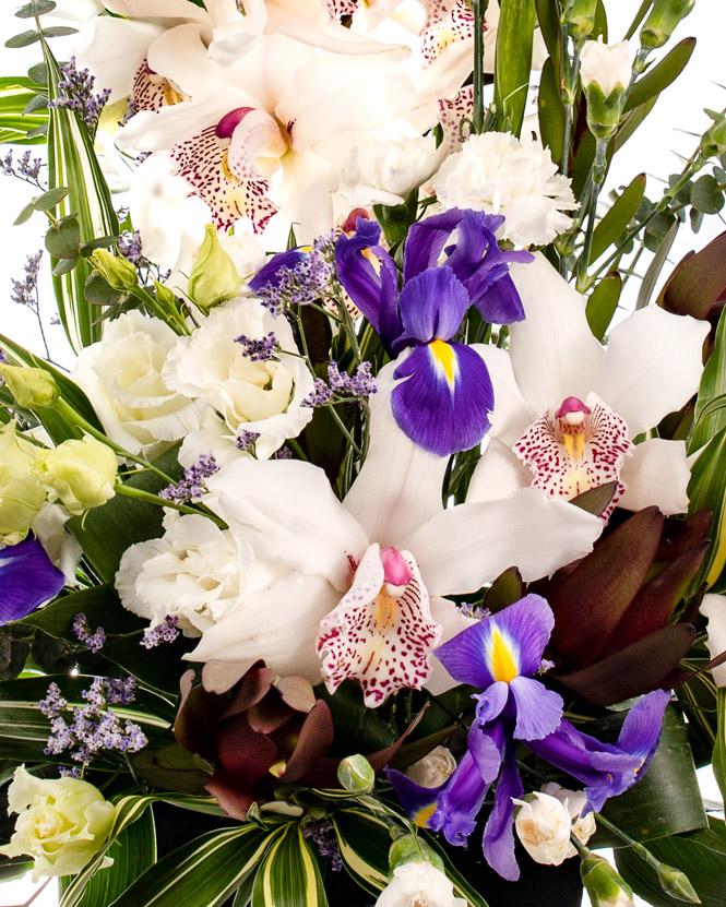 Floral show