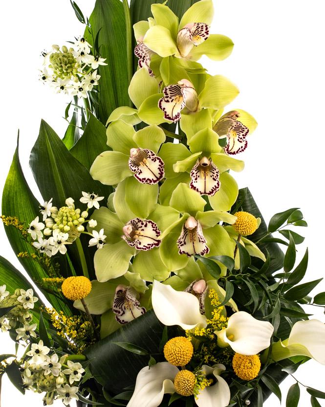 Surpriză cu orhidee