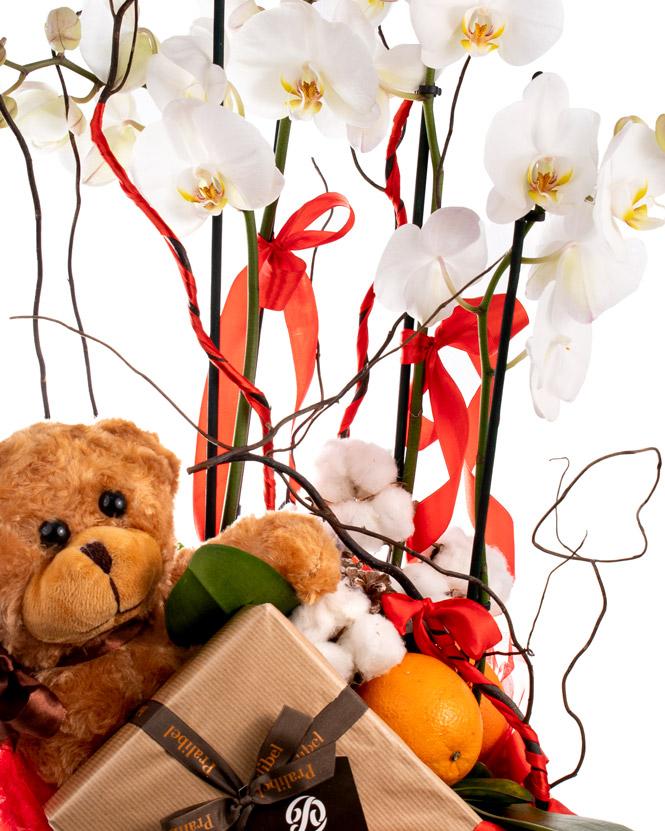 Cadou cu orhidee și ciocolată