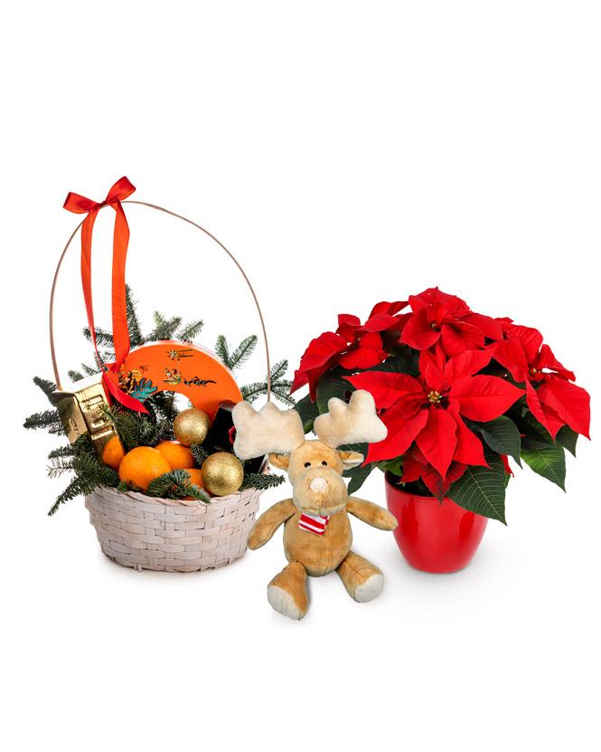 Bucurie de Crăciun