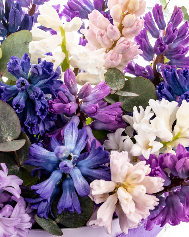 Hyacinth arangement