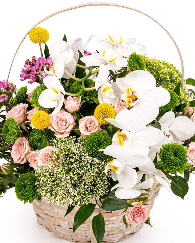 """Happy Day"" arrangement"