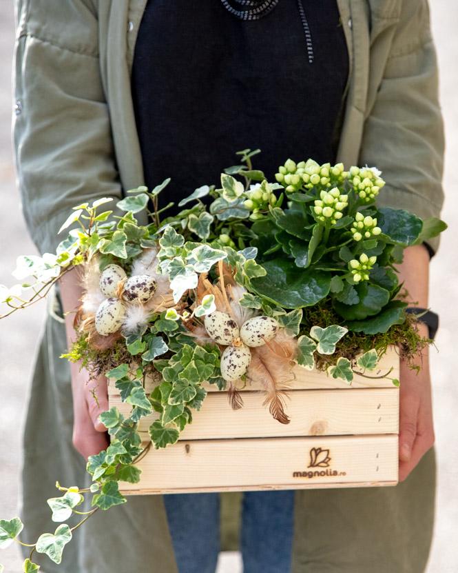 Aranjament cu plante și accesorii de Paște