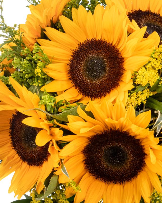 Buchet cu floarea-soarelui și solidago