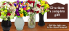 Vase accessory for flowers