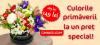Cutie cu flori de primavara - Comanda online | Magnolia.ro
