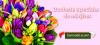 Flori de 1 martie - Flori de martisor | Comanda online