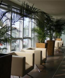 Amenajări de interior şi decoraţiuni cu plante