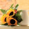 Buchete cu floarea soarelui ce exprima si cui sa le daruiesti