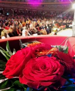 Gala Naţională a Excelenţei în Asistenţa Socială 2019 3