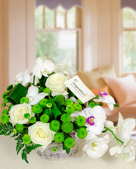 Aranjamente florale orhidee si trandafiri in cos