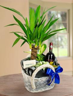 Aranjament plante mix și o sticlă de vin roșu