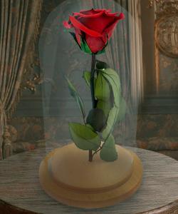Cryogenic Rose Fairytale Gift