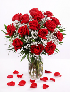 Red roses and gypsophila bouquet