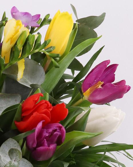 Buchet frezii şi lalele multicolore