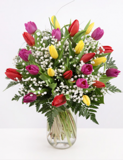 Bouquet with colorful tulips and gypsophila