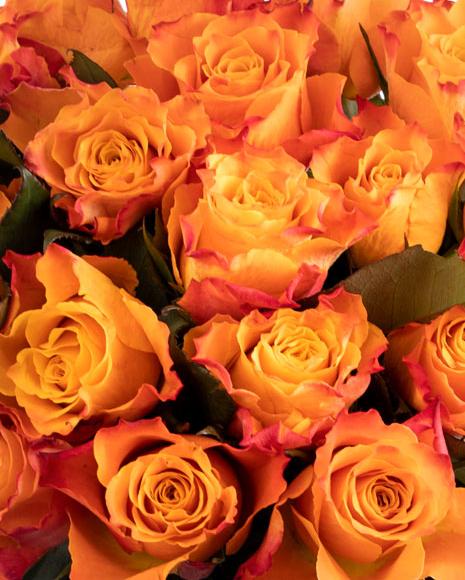 Buchet cu trandafiri portocalii