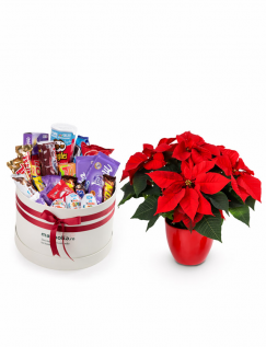 Cutie cadou cu dulciuri