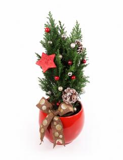 Brăduț decorat de Crăciun